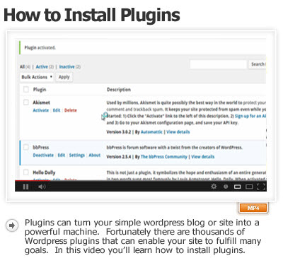 How to Install Plugins