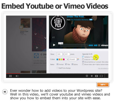 Embed Youtube or Vimeo Videos