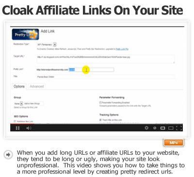 Cloaking Ugly Long Affiliate Links